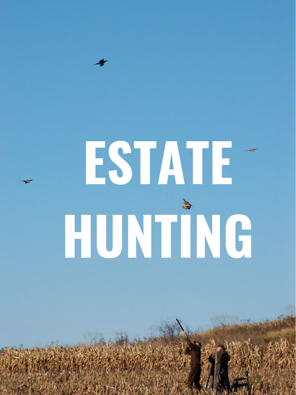 estate-hunting-section-graphic