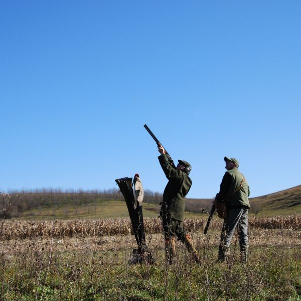 two men pheasant shooting in hungary