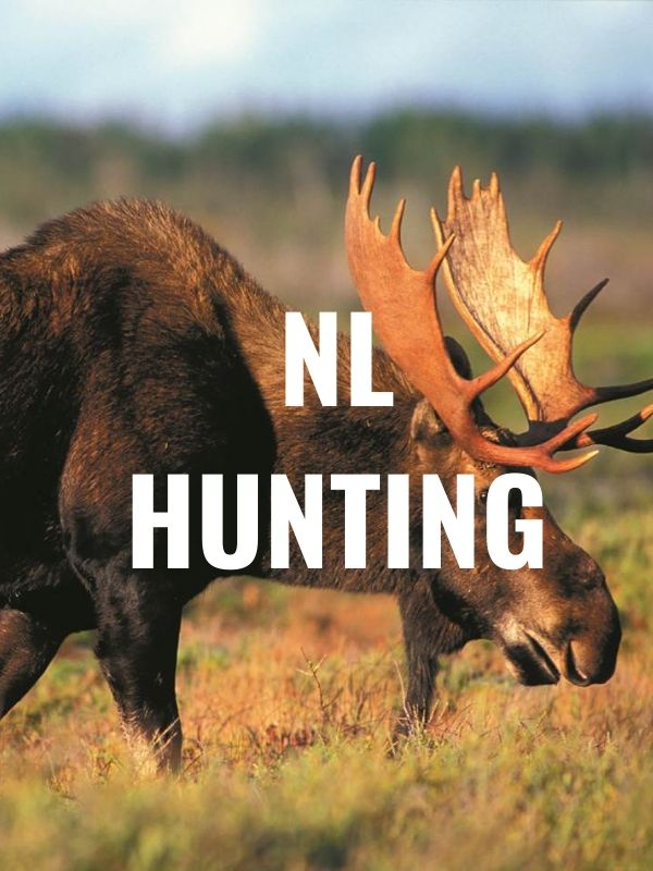 NL hunting graphic