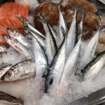 Mackerel tails