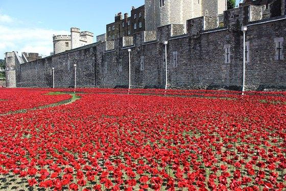 ceramic-poppies-first-world-war-installation-london-tower-2