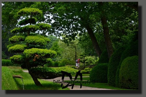 Garden-Arcen