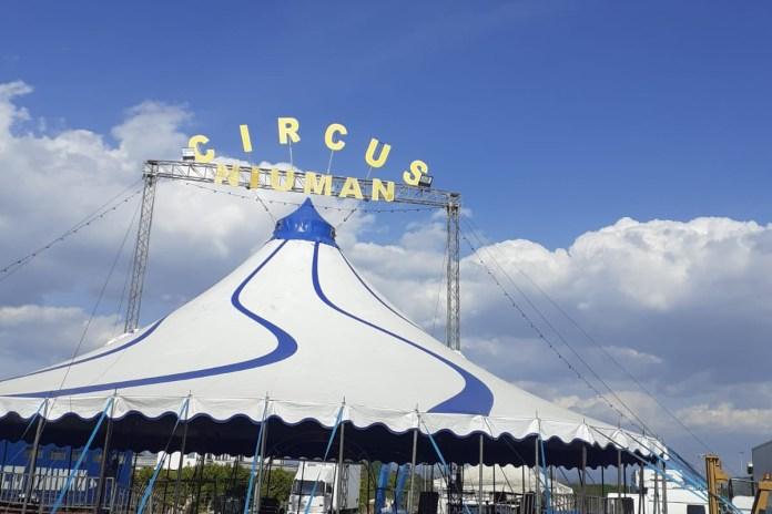 Aiuta il Circo Henry Niuman e si suoi animali a ripartire!