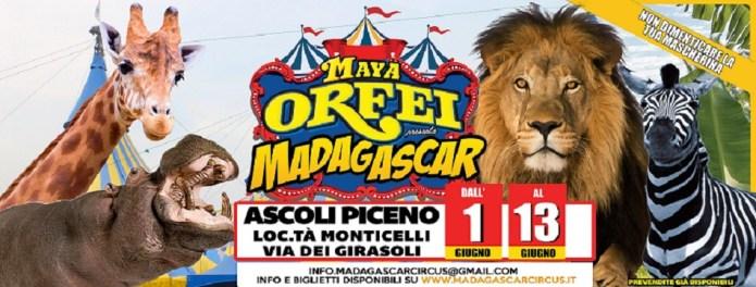 Riparte da Ascoli Piceno il Maya Orfei Circo Madagascar