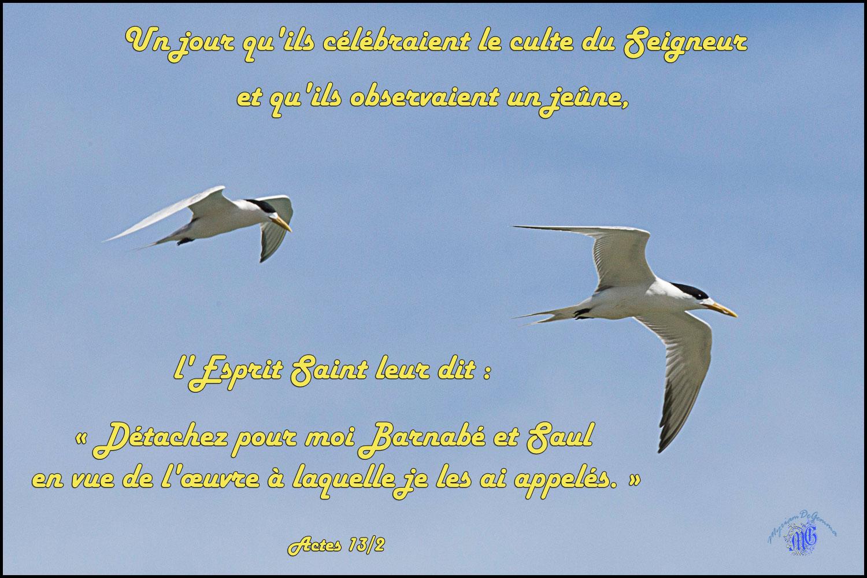 Actes 13 2aaw