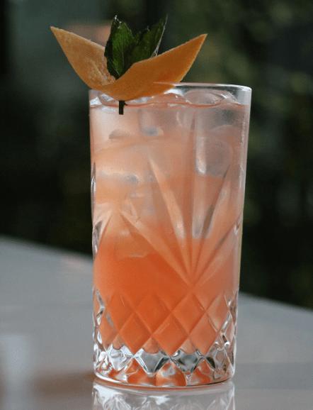 un zeste de passion noroi gin photo