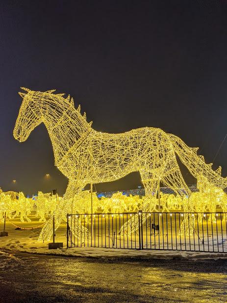 cheval-hiver-noel