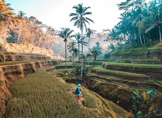 A person exploring the sides of Bali for every traveler