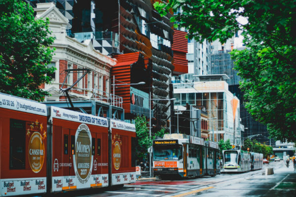 Trams traveling down Melbourne's leafy city streets