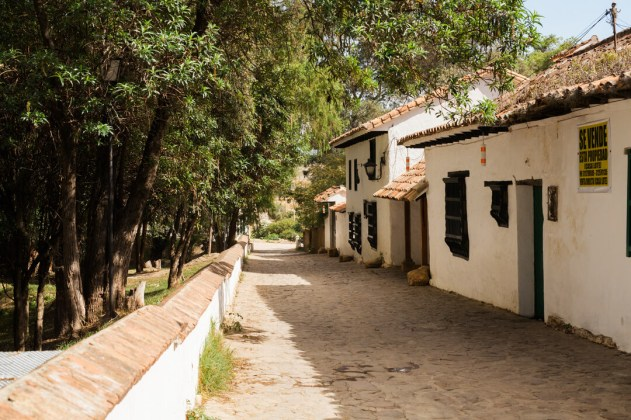 village back street with canopy of trees