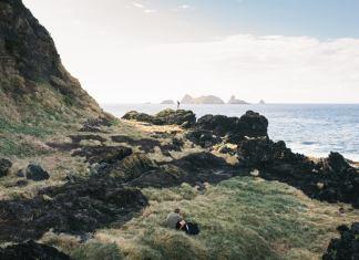 grassy island coast