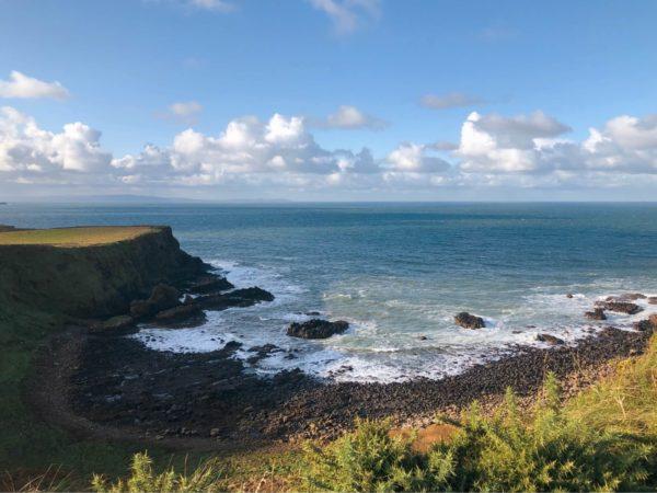 coast of giant's causeway in ireland