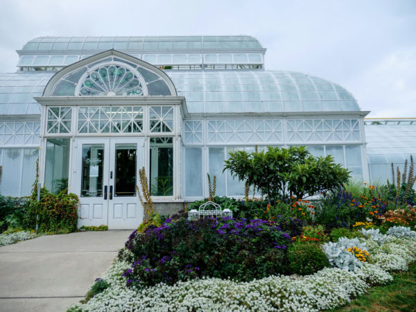 garden conservatory with pathway shrubbery
