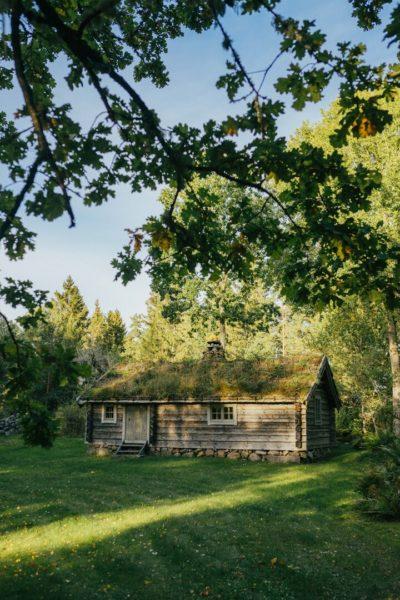 wooden cabin in trees