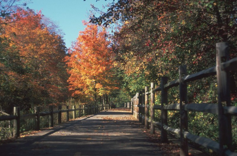If you're planning to travel to New England and you love the outdoors, you won't want to miss the region's best rail trails. They're perfect cycling, walking, and running paths, and most have some history, too. Try one of our top bike rides in New England, and explore Boston, Cape Cod, Lake Champlain, and more.