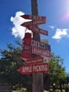 apple-picking-farm