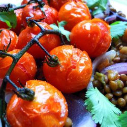 Cherry tomatoes on a bed of lentils