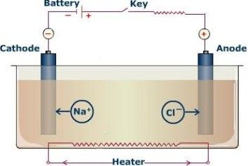 Preferential Discharge of Ions during Electrolysis | Passnownow