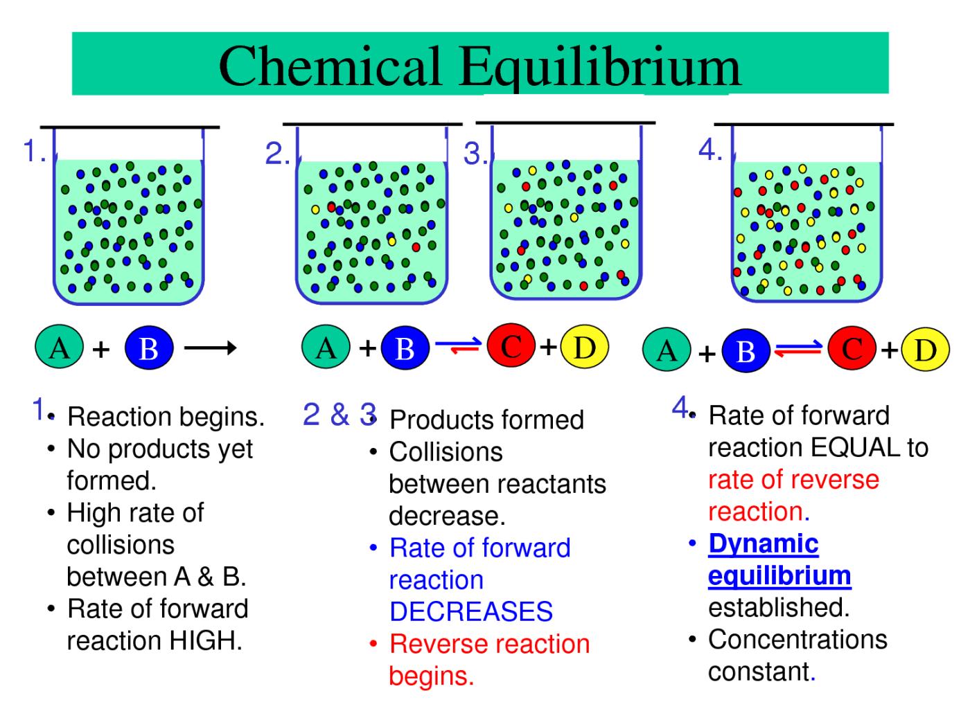 Chemical Equilibrum Passnownow