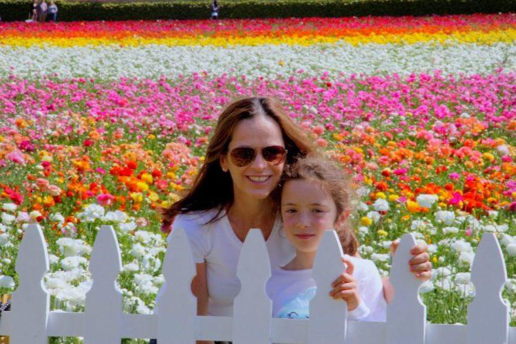 San Diego Carlsbad Flower Fields