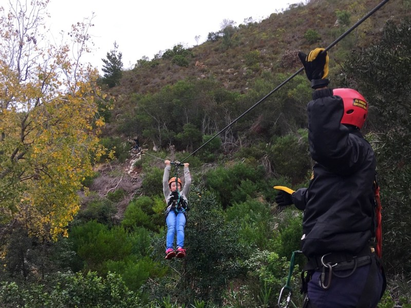 South Africa Forest Adventures,