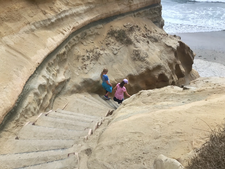 San Diego Torrey Pines State Reserve