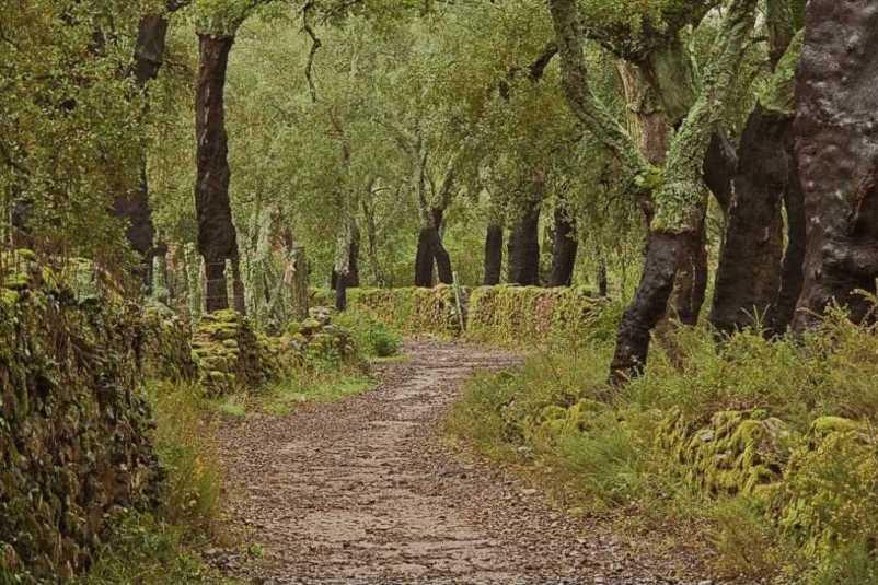visitar Sierra de Aracena españa