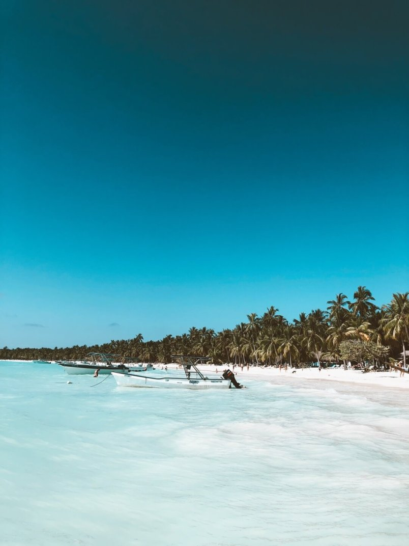 playa del gato isla saona