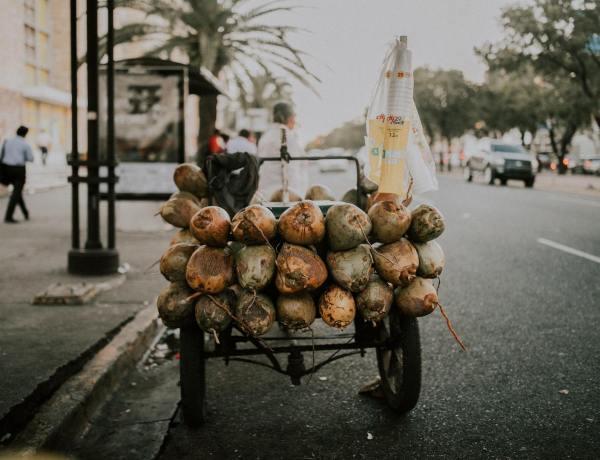 que hacer en Santo Domingo