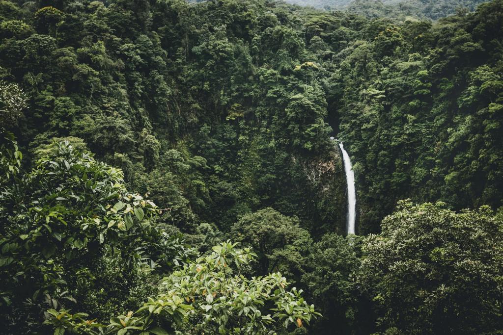 Cascada La Fortuna, Alajuela Costa Rica