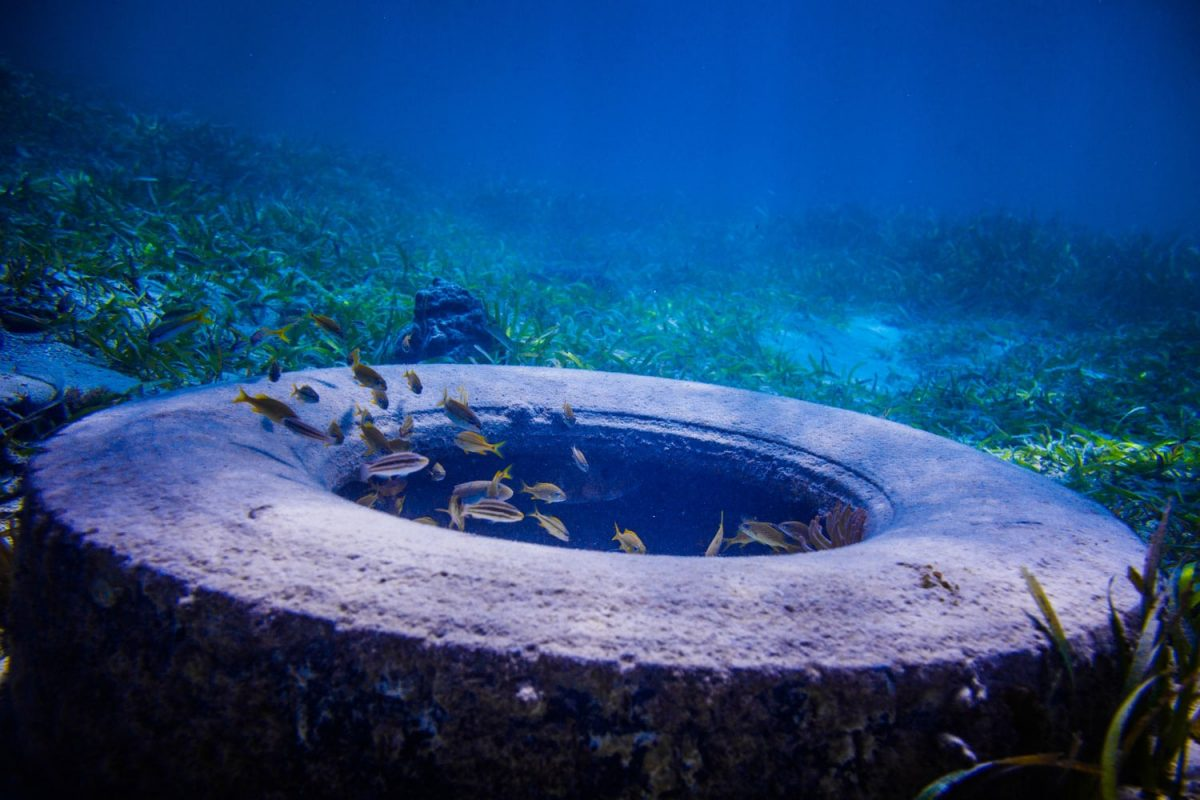 15 Effective Solutions To Water Pollution