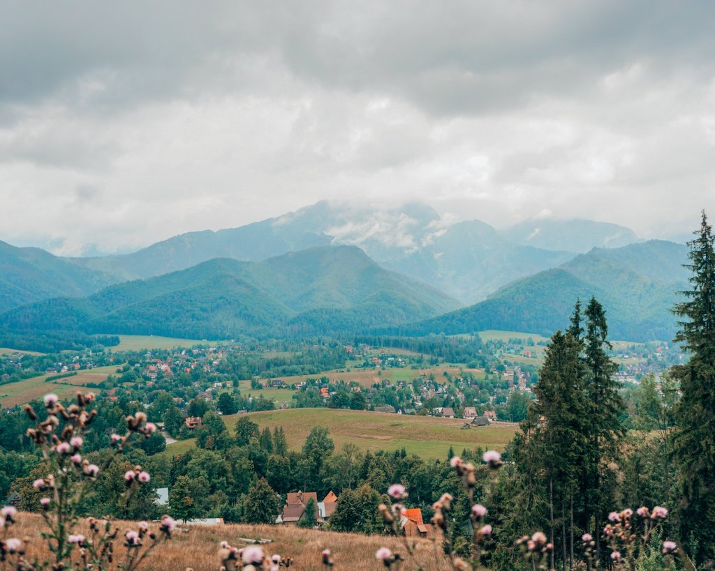 Zakopane hiking view