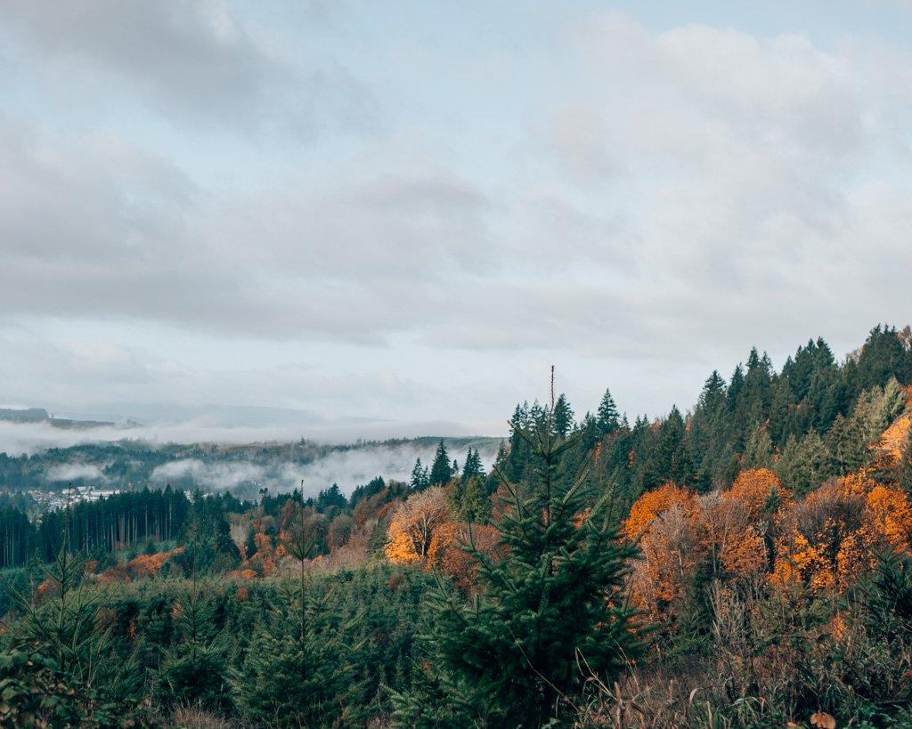 Road trip in Oregon