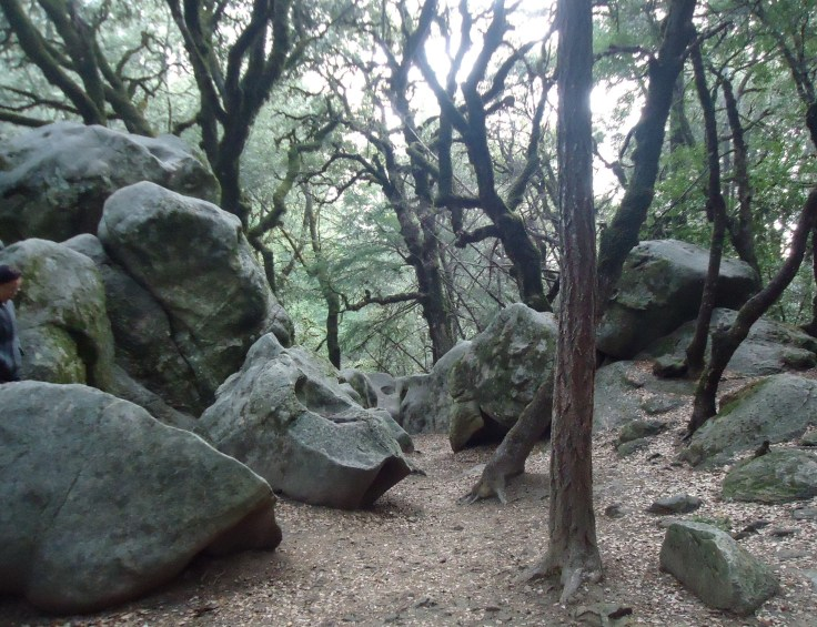 Castle_Rock_State_Park_in_California_with_rock_formations