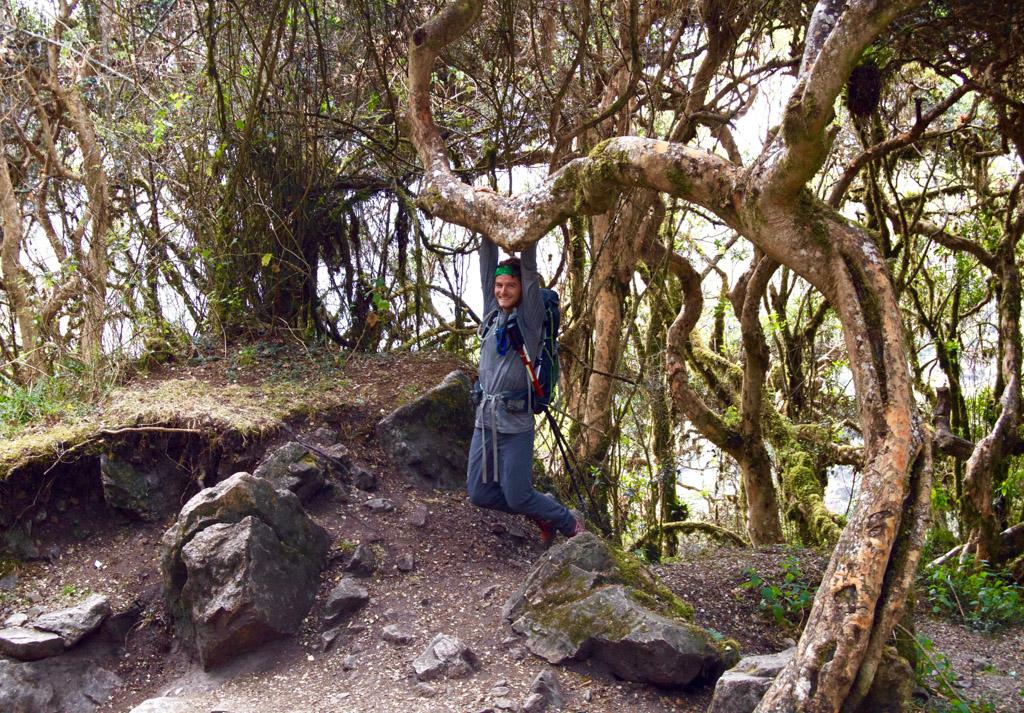 Inca Trail Day 2 Peru