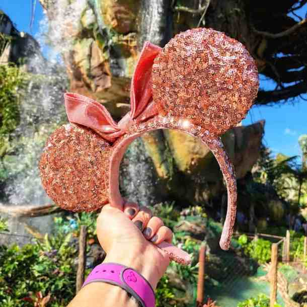 How To Show Off Your Disney World Spirit in Rose Gold Style