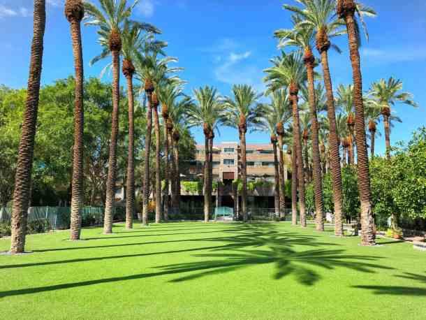 Hyatt Regency Scottsdale Resort Courtyard