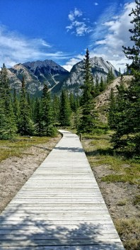 Siffleur Falls Boardwalk