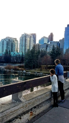 A morning Walk near the River, Calgary