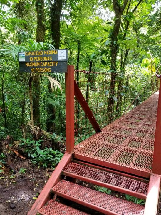 Wilford F Guindon Bridge, Monteverde Cloud Forest, Costa Rica