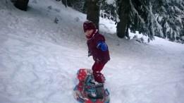 Lucas (6) sledding or surfing?