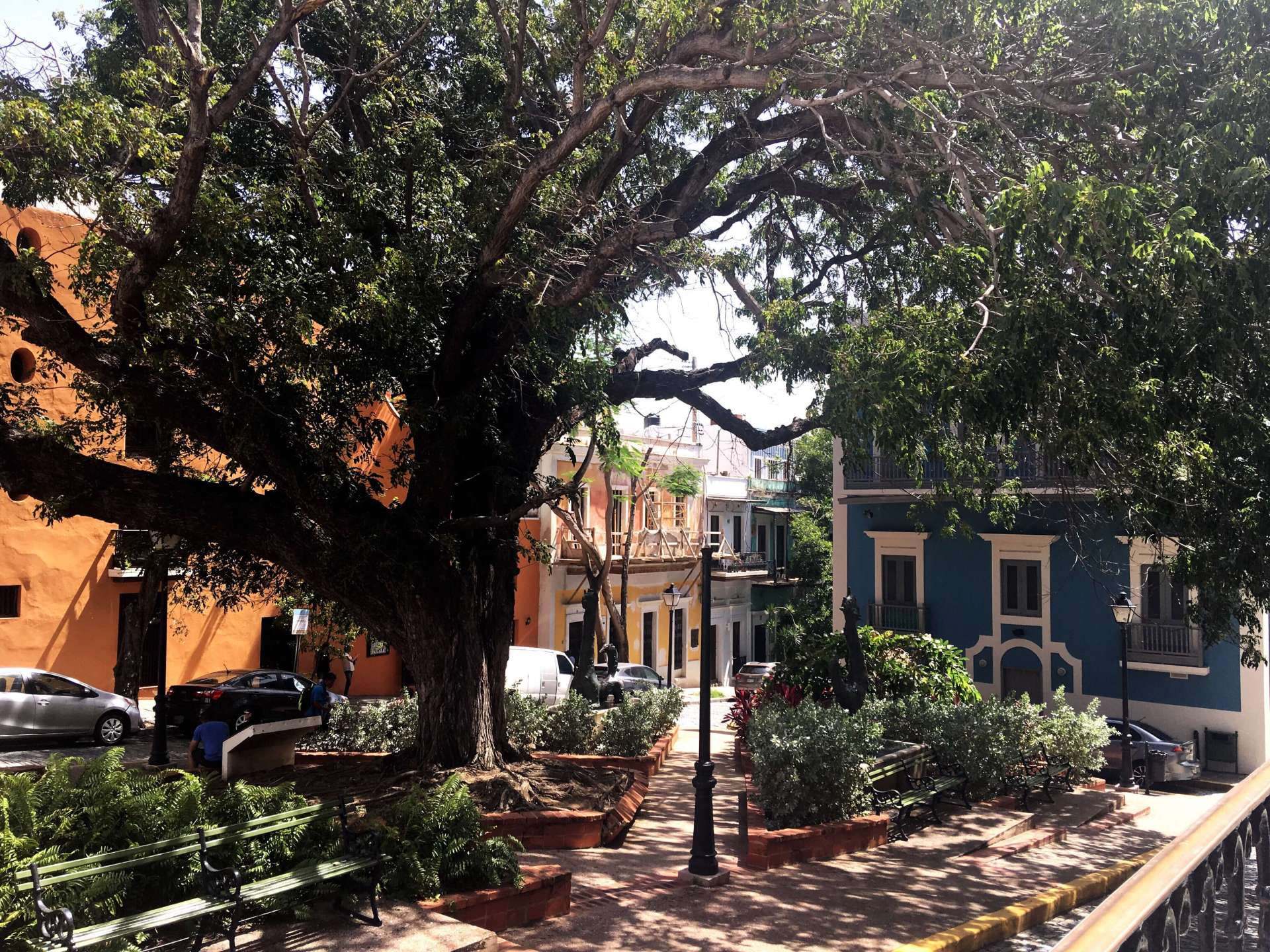 Old San Juan colorful buildings trees and el convento