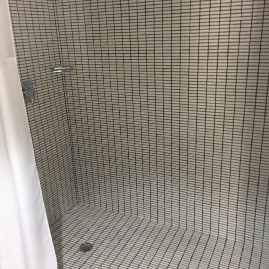 Huge Master Bathroom shower