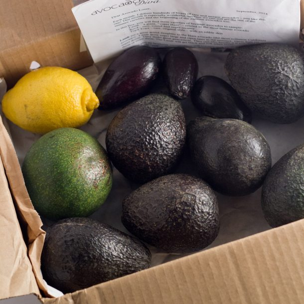Dessert Guacamole and Avocado Giveaway from The Avocado Diva   https://passtheplants.com