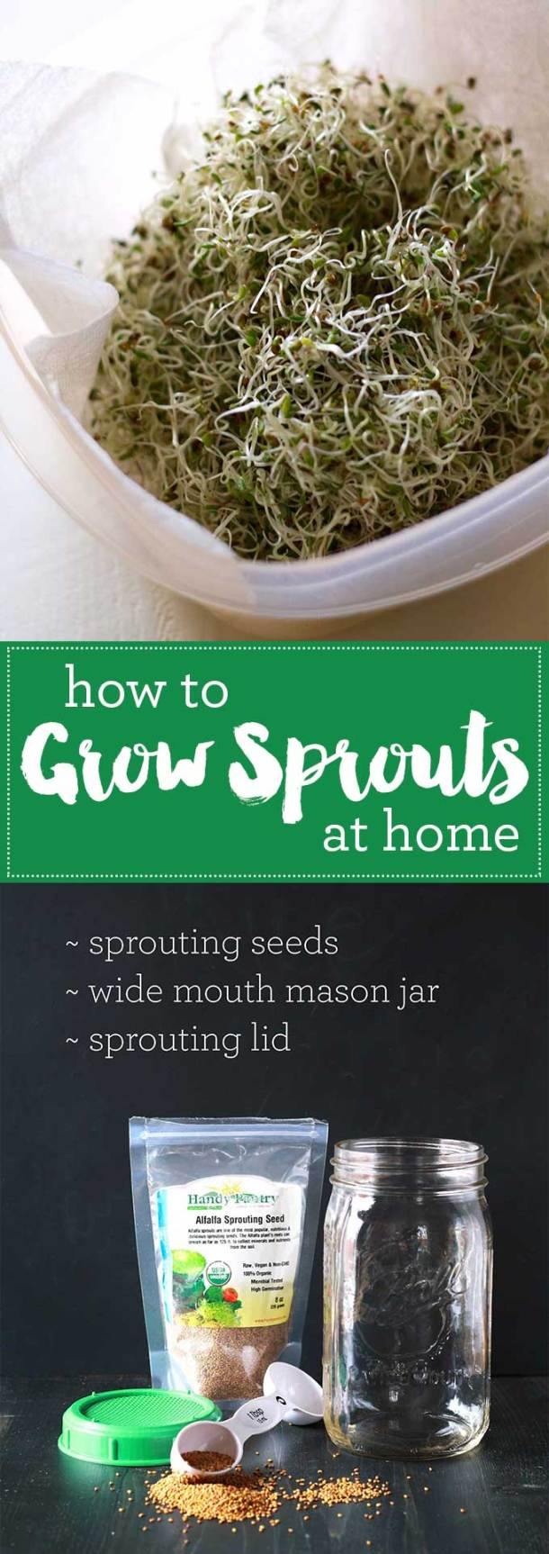 Growing sprouts at home is so easy and is huge money saver! You may never buy sprouts at the store again! | https://passtheplants.com