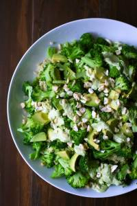 Triple Broccoli Quinoa   Broccoli is the star of the show in this delicious and healthy meal! Packed with protein and and so good for you. Vegan, gluten-free, WFPB   https://passtheplants.com/
