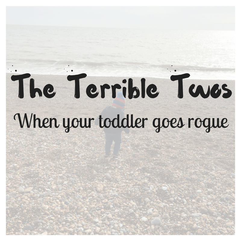 The Terrible Twos: When your toddler goes rogue