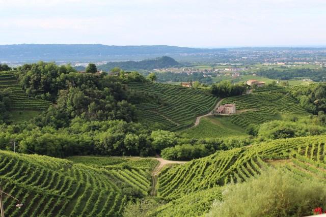 Italië Treviso heuvels