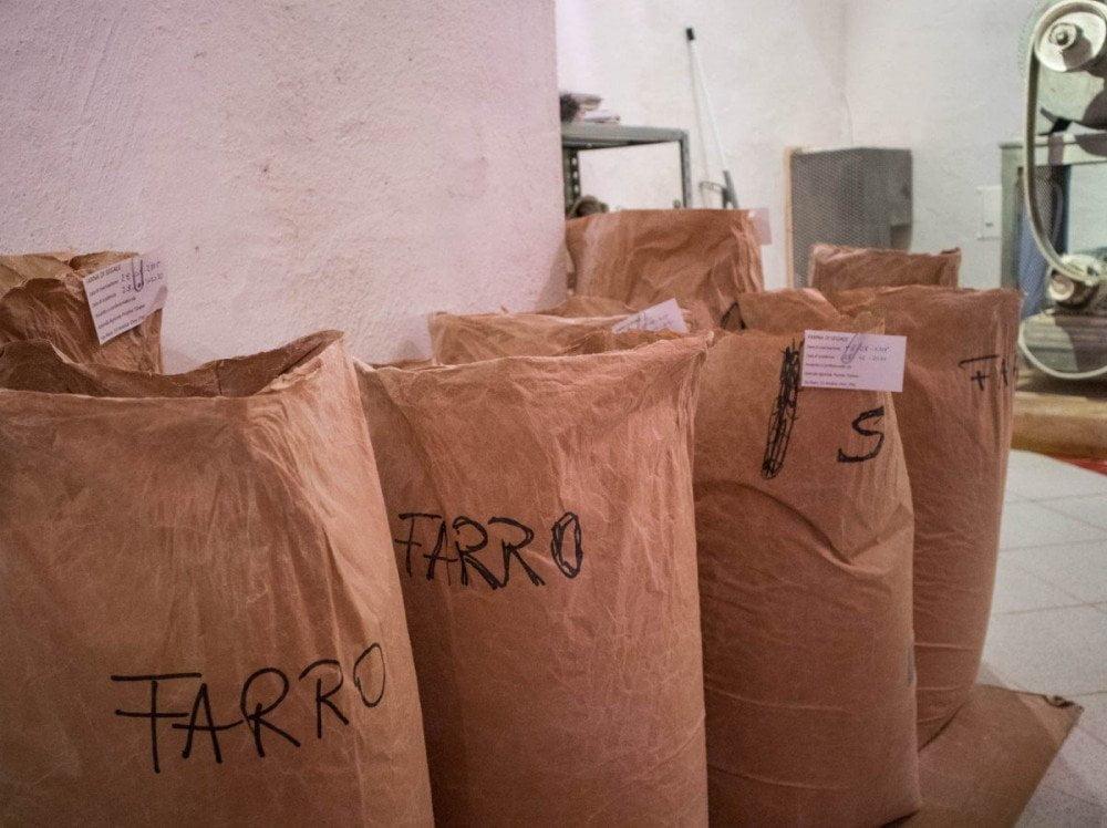 Farine integrali semintegrali macinate a pietra Dal gran al pan nel mulino dell'azienda agricola Pezzini