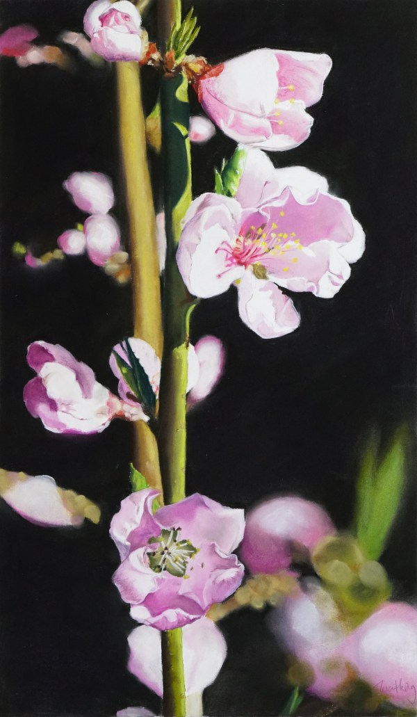 pastel painting of a nectarine flower